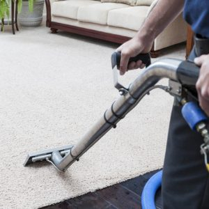 Carpets Professional Cleaning